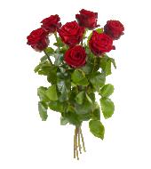 wat kosten rode rozen per stuk